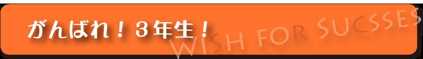 Wishforsuccess