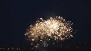 2015 西高祭花火 11